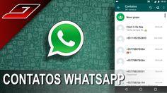 Após atualização não encontro os contatos do Whatsapp - Canal Guajenet