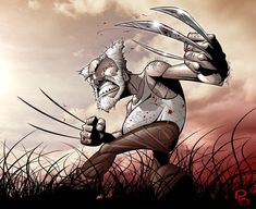 Good Old Wolverine by *patrickbrown