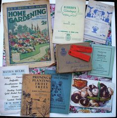 Vintage gardening printed catalogue, seed packets and ephemera