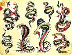 American traditional cobra tattoos