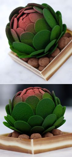 A mini-chocolate succulent sculpture hand-crafted by Adam Chandler. That's right, chocolate!