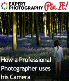 How Learning Composition Can Dramatically Improve Your Photos - Expert Photography Improve Photography, Photography Lessons, Photography Camera, Photography Tutorials, Photography Business, Photography Photos, Creative Photography, Digital Photography, Amazing Photography