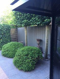 #garden #groen #lounge #grey wall #kavel22