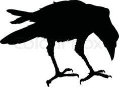Image detail for -Stock vector of 'Vector raven'