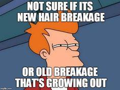 Hair band argumentative essay?