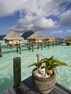Pearl Beach Resort, Bora-Bora, Leeward Group, Society Islands, French Polynesia Photographic Print by Sergio Pitamitz at AllPosters.com