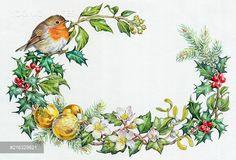 PortForLio - Robin on Holly with ivy, mistletoe, pine etc