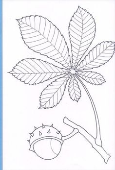 Use the arrow keys to move to the displayed image - Coloring Pages Fall Coloring Pages, Pattern Coloring Pages, Autumn Activities, Art Activities, Hand Embroidery, Embroidery Designs, Autumn Crafts, Arte Floral, Printable Designs