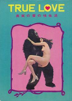 TRUE LOVE(Japanese vintage adult book) | Bokito!
