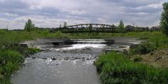 Wenk :: Stapleton Stormwater Framework Plan and Water Quality Guidelines