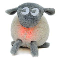 Ewan the Dream Sheep - Night Lights - Equipment
