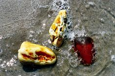 Amber Baltic Sea, Baltic Amber, Amazing Pictures, Origins, Food, Essen, Meals, Yemek, Eten
