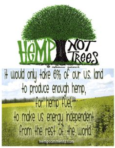 Hemp is not marijuana. #famfinder (I do not use any drug & only support marijuana for serious medicinal purposes. If this is true about hemp fuel, I am so supportive. I need to do some research.)