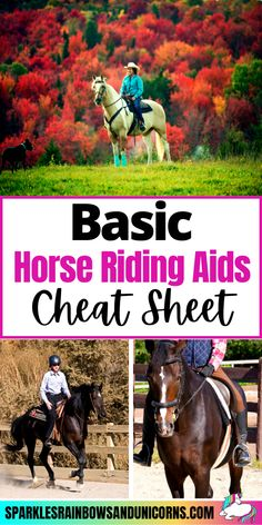Use this cheat sheet to improve your riding. Just look at it before each ride to remind yourself of the aids you should be using to ask the horse to perform basic movements and maneuvers. Be aware... Click the link to read the rest of the post!#horsecheatsheet #horseridingcheatsheet #horseprintable #horseridingprintable #cheatsheet #beginnerequestrian #horseriding #horsebackriding #beginnerhorserider #horsebackridingtips #horseridingtips #learningtoridehorses Horseback Riding Tips, Horse Riding Tips, Horse Print, Cheat Sheets, Cheating, Improve Yourself, Horses, Pets