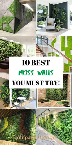Moss Walls are Made from Preserved Mosses that are ethically sourced, and part of a growing design movement called Biophilic Design. In Today's world we need to introduce as much nature into our interior spaces creating a calming and soothing space that also is proven in increase productivity in the workplace.#mosswalls #livingwalls #greenwalls #verticalgardens