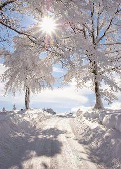 beautiful snowy sunburst
