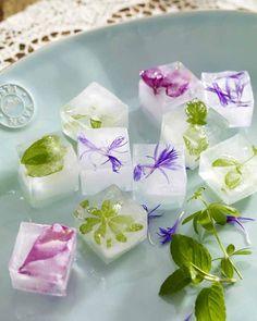 Oh, wie süß sind die denn!? Ab sofort werden Getränke nur noch mit Frühling serviert! Die geblümten Eiswürfel machen's möglich!    Und so geht's:  1. Blätter der Kräuter und Blütenblätter der Blumen abzupfen.  2. Eiswürfelbereiter mit Wasser füllen und Blätter hineingeben.  3. Im Gefrierschrank einfrieren.