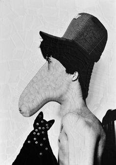 Equine Portrait - Lola Duprė