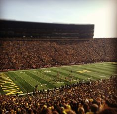 It's almost that time of year! August 31st is right around the corner. #goblue #umich