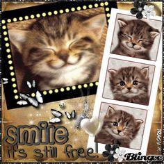 Smile It's Still Free!