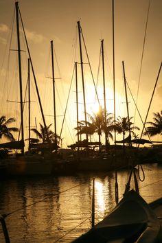 Beautiful sunset on Raiatea, Society Islands. Society Islands, Feeling Thankful, Bora Bora, Beautiful Sunset, Us Travel, Sailing Ships, Sunsets, Landscapes, Boat
