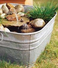 Mini water garden oasis