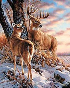 Color Deer Waves 16x20 inches Number Painting Anti Stress Toys Wooden Framed ABEUTY DIY Paint by Numbers for Adults Beginner