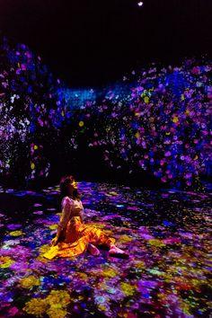 Stella Lee, Tech Art, Projection Mapping, Images Wallpaper, Holiday Lights, Art Of Living, Light Art, Art Museum, Sculpture Art