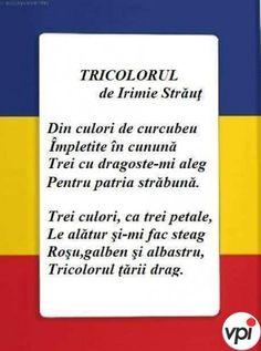 Five Senses Preschool, Kindergarten Activities, 1 Decembrie, Kids Poems, Moldova, Early Education, Romania, Classroom, Teacher