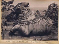Nandi, Chamanda Mandir, Mysore