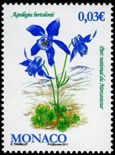 Show Us Your Beautiful Flowers on Stamps! - Stamp Community Forum - Page 16 Old Stamps, Vintage Stamps, Valley Of Flowers, Flower Stamp, Mail Art, Stamp Collecting, Paper Decorations, Paper Design, Beautiful Flowers