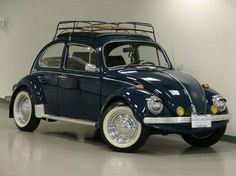 Not a fan of the beetle. But the older ones look kinda cute with a roof rack.