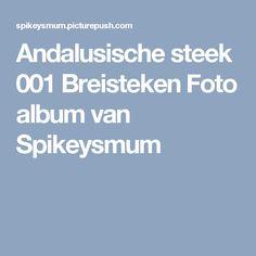 Andalusische steek 001 Breisteken Foto album van  Spikeysmum
