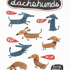 #Dachshunds ! #dogs #illustration