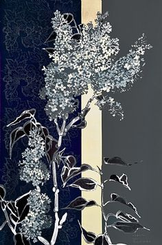 Robert Kushner, White Lilac