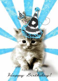 Kitty and mouse happy birthday Birthday Qoutes, Birthday Clipart, Happy Birthday Meme, Happy Birthday Messages, Cat Birthday, Happy Birthday Images, Animal Birthday, Birthday Pictures, Birthday Blessings