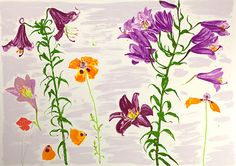 Lilies and Poppies (2003), screenprint - Elizabeth Blackadder