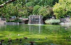 Pershing Park, Washington D.C.