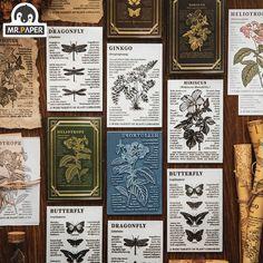 Mr Paper 5 wzorów naturalna roślina drewniana pieczątka do scrapbookingu Deco DIY Craft standardowe drewniane znaczki atramentowe artykuły papiernicze,Kupuj od sprzedawców w Chinach i na całym świecie. Ciesz się bezpłatną wysyłką, wyprzedażami, łatwymi zwrotami i ochroną kupujących! Ciesz się ✓ bezpłatną wysyłką na cały świat! ✓ Limit czasu sprzedaży ✓ Łatwy zwrot Background Decoration, Nature Collection, Rubber Material, Wood Stamp, Book Crafts, Diy Cards, Hibiscus, Craft Projects, Shopping