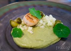 Scallop / Cucumber / Melon at Kaskrut in Warsaw Poland #food