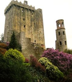 """Blarney Castle in Ireland."" (From: 50 Beautiful Photos of Ireland)"