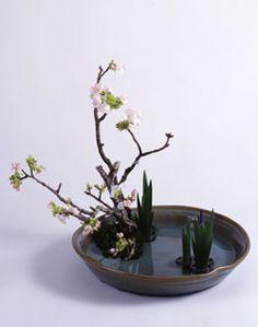 Ikebana -  Landscape Moribana