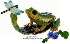 Trinket Box: Frog and Dragonfly