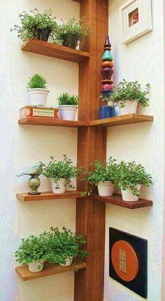 Inspiração ♡ #interiores #design #interiordesign #decor #decoração #decorlovers #archilovers #inspiration #ideias #detalhe #details #horta #hortavertical #jardimvertical #prateleiras #cantoneira