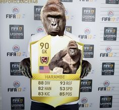The best Ultimate Team card on FIFA! #Harambe