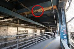 The Manhattan Bridge Is Used By Thousands Every Day... But It Holds A Dark Secret. Look Closer.
