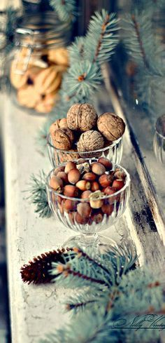 Nüsse als Deko-Element für die Winterzeit. >> Glass Bowls of walnuts and hazelnuts and spruce on the mantle