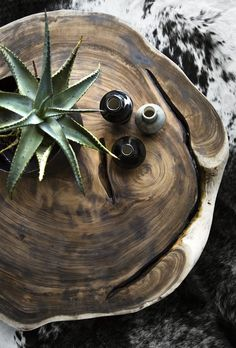 Succulents and wood tables