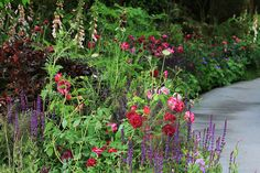 Detail from Jo Thompson's Chelsea Barracks Garden for Qatari Diar, RHS Chelsea Flower Show 2016 Cottage Garden Plants, Green Garden, Chelsea Flower Show, Chamomile Lawn, Formal Garden Design, Chelsea Garden, Kangaroo Paw, Garden Images