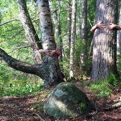 ❤️#puunhalausviikko alkaa huomenna 22-28.8.2016. Halaus tekee ihmeitä 🌲